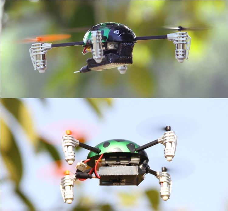 Walkera Ladybird V2 in flight