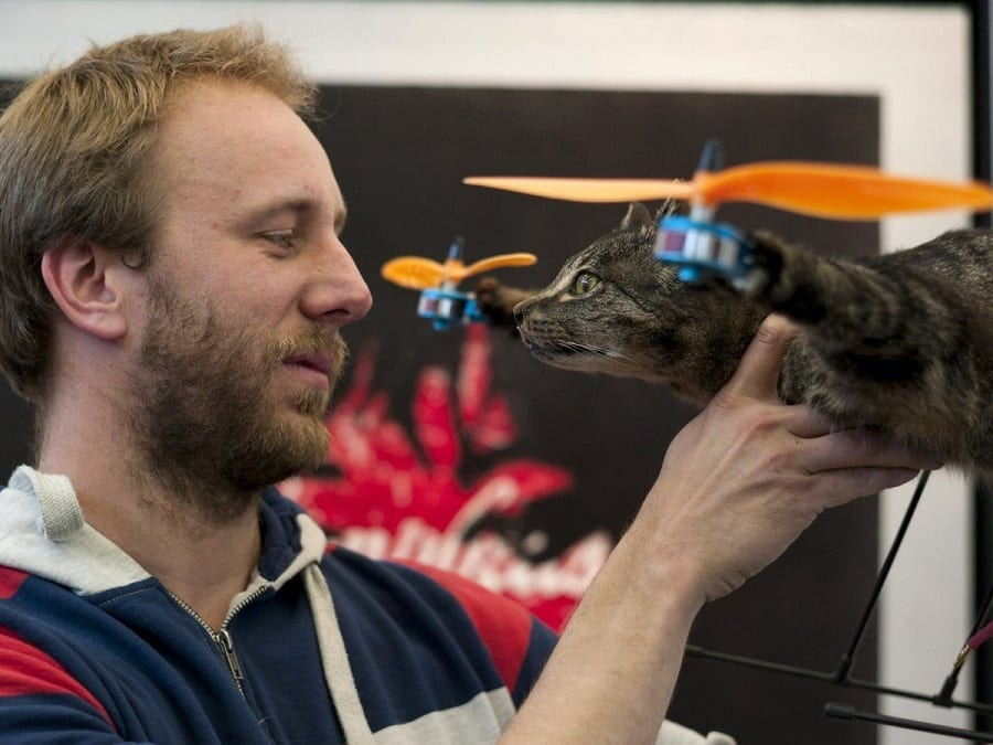Cat drone made